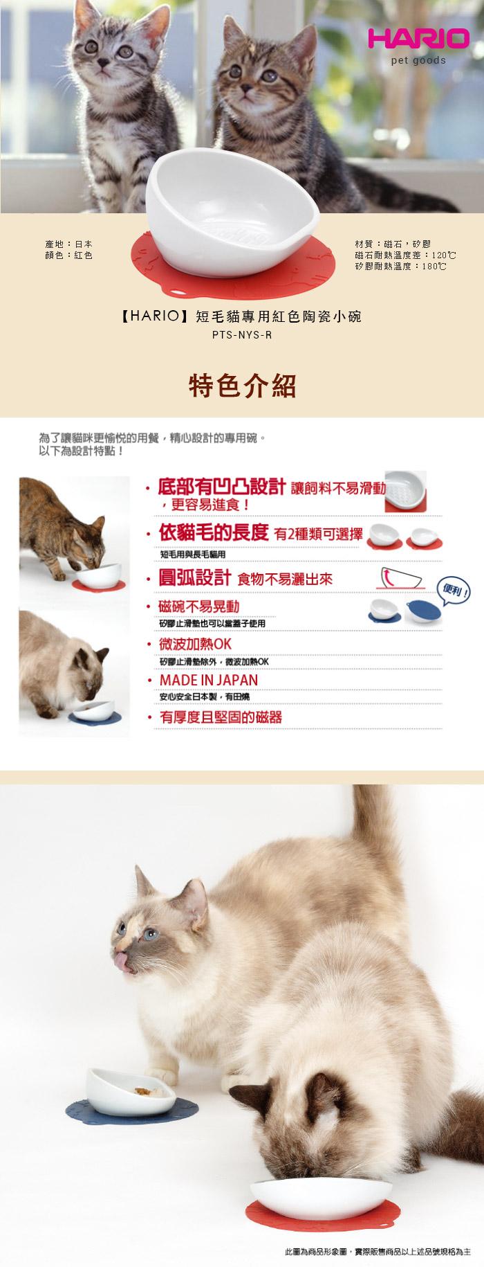 HARIO  短毛貓專用紅色陶瓷小碗  PTS-NYS-R