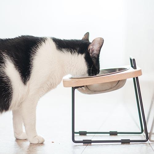 拍拍|原木寵物托高碗架 S16/楓木
