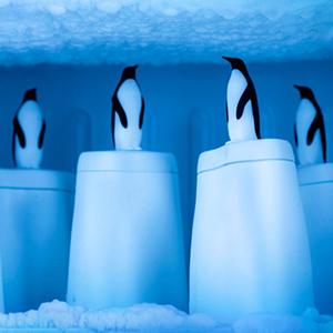 Qualy 冰原企鵝-冰棒盒