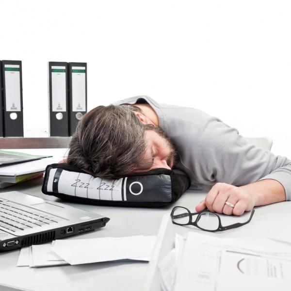 賽先生科學工廠|倒桌就睡造型枕頭