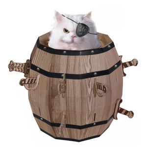 賽先生科學工廠|Cat barrel 瘋狂貓咪桶