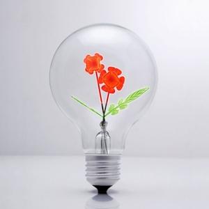 DarkSteve「演活生命」|設計師燈泡 - 玫瑰情人球泡燈 Edison-Style 愛迪生燈泡