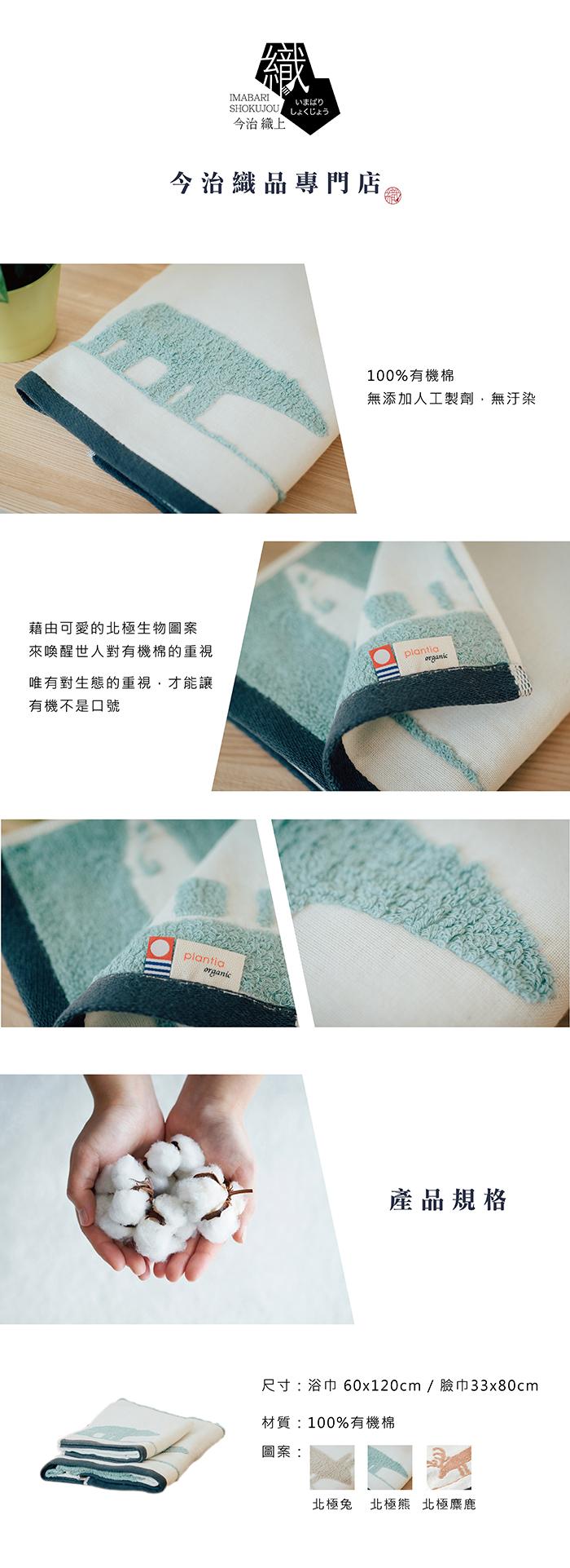 今治織上|日本今治毛巾 今治認證 壺內 北極星系列 北極熊 (臉巾)