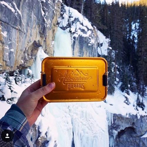 英國 Wild & Wolf|英國風探險家系列 野餐便當盒/午餐盒 金色