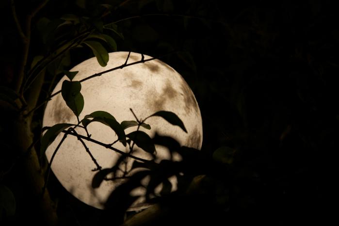 橡果藝術|LUNA Mini 月球燈 (15cm)