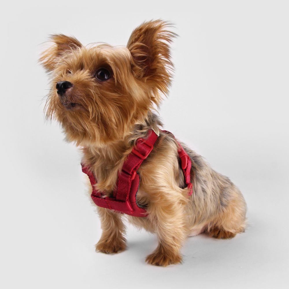 SPUTNIK|寵物胸背帶 Harness 紅 (S)
