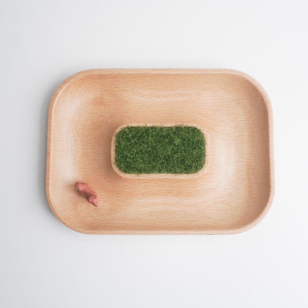 TOSMU 童心木 小物收納盤-沙漠綠洲