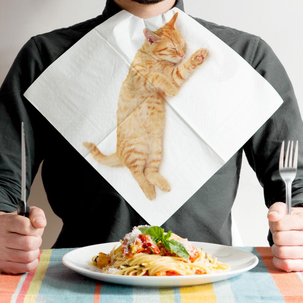 英國 Suck UK|貓咪餐巾紙