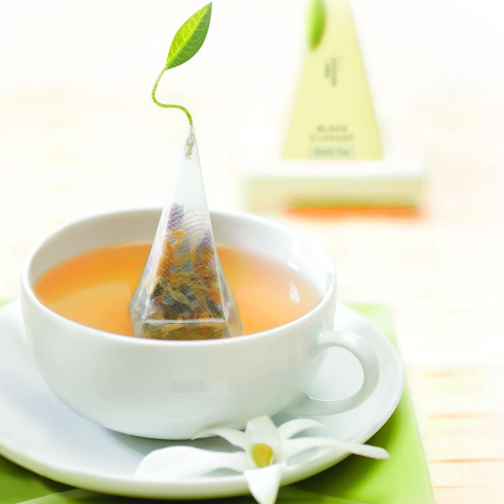 Tea Forté|48入金字塔型絲質茶包 - 南非紅葉茶