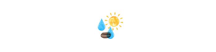 (複製)想望咖啡|藝伎.騷莎 掛耳包/咖啡粉隨身包10入 (乾式發酵半水洗.淺中焙)