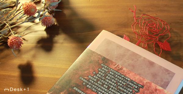 (複製)Desk+1│落雪桐磁吸組(6隻裝)