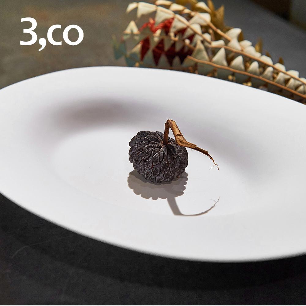 3,co│海洋橢圓盤(大) - 白