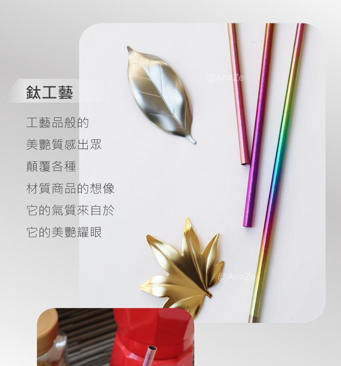 日本HORIE|鈦愛地球-純鈦ECO環保吸管-璀璨虹+原木柄吸管刷