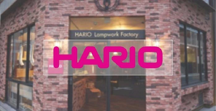 HARIO 簡約按壓式黑色調味罐120 ODB-120-B