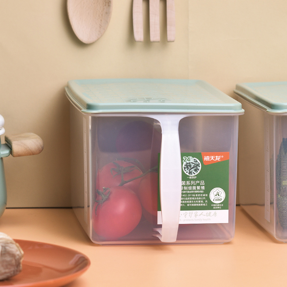 CITYLIFE 奈米抗菌PP提把式雜糧穀物保鮮盒-6L-3入
