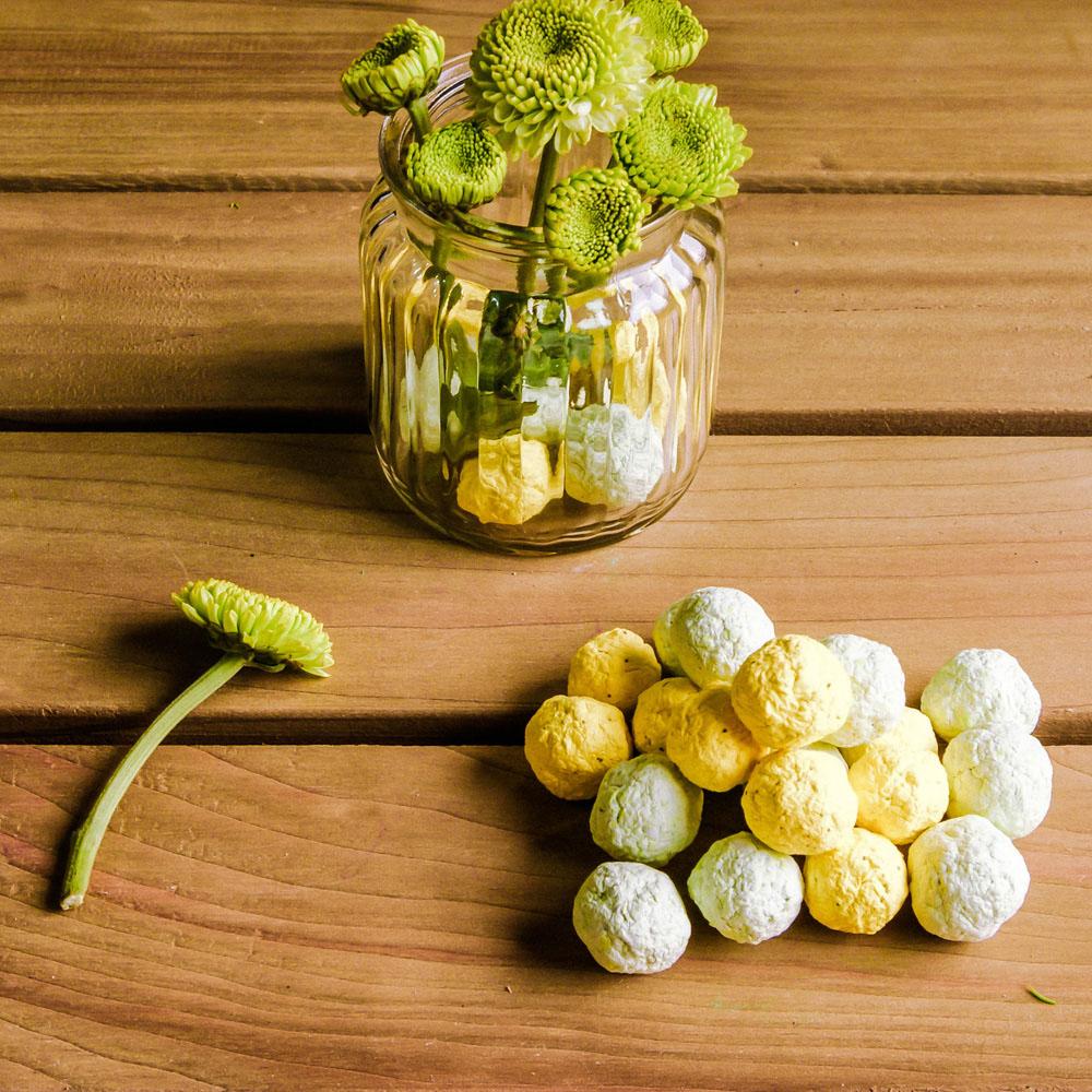 WOOPAPERS|Herbs 香草種子球植栽盆栽組