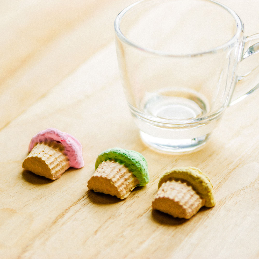 WOOPAPERS Tea Time 小午茶時光~ 杯子蛋糕種子球植栽盆栽組
