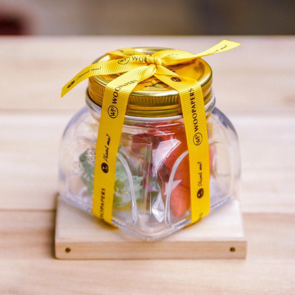 WOOPAPERS|Salad Jar 寶貝沙拉種子球罐