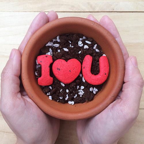 WOOPAPERS|I Love U 字母種子球植栽禮物組