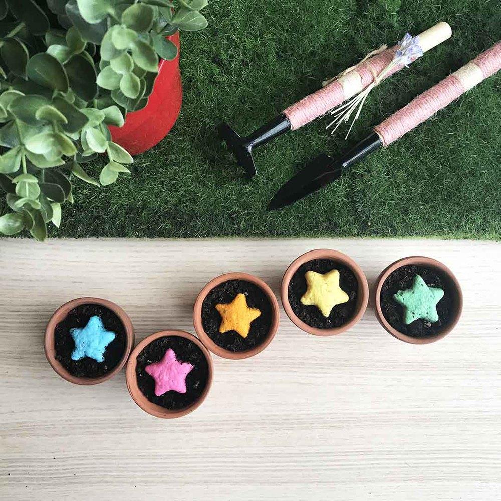 WOOPAPERS|Star Grows 香草星星種子球植栽套組 (一套5組)