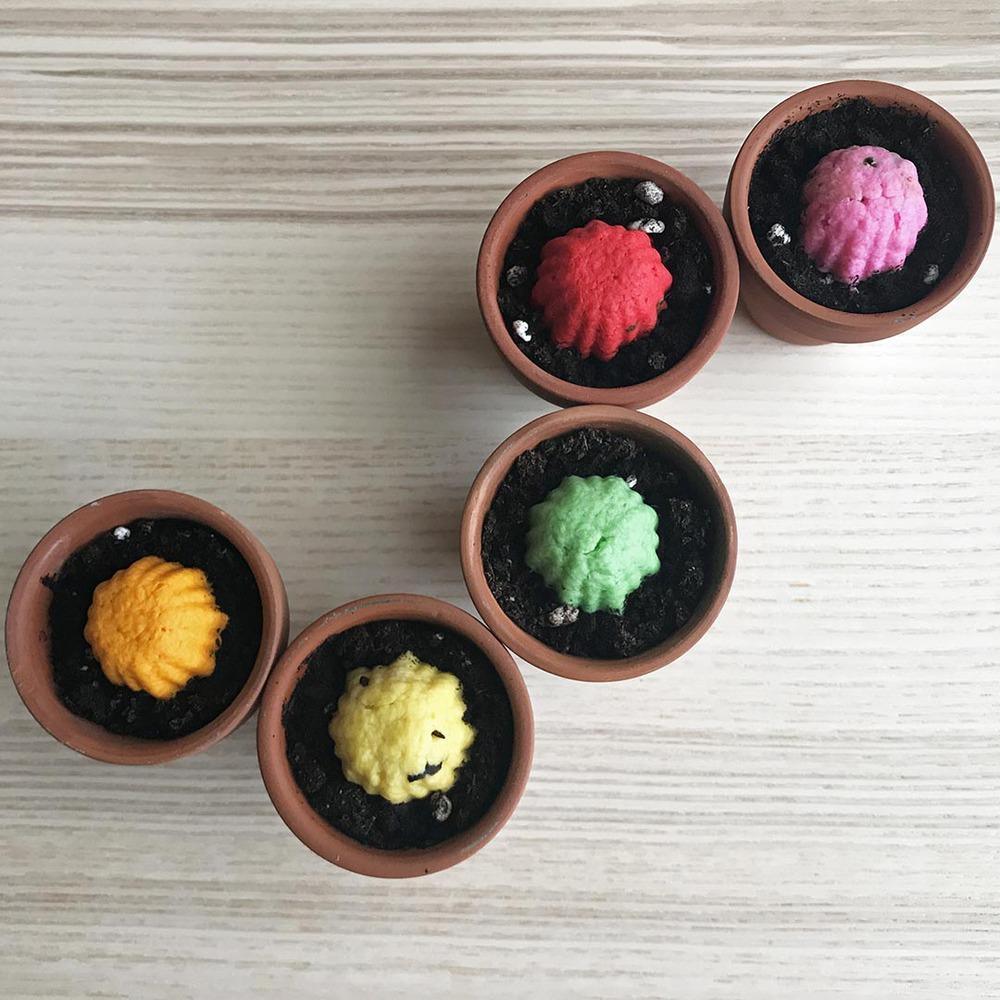 WOOPAPERS|Flower Grows 彩色花朵種子球植栽套組 (一套5組)