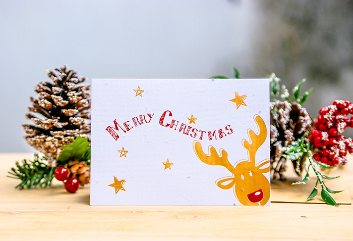 (複製)WOOPAPERS 聖誕限定~ 聖誕造型種子球(4顆裝) & 種子紙卡片禮物組