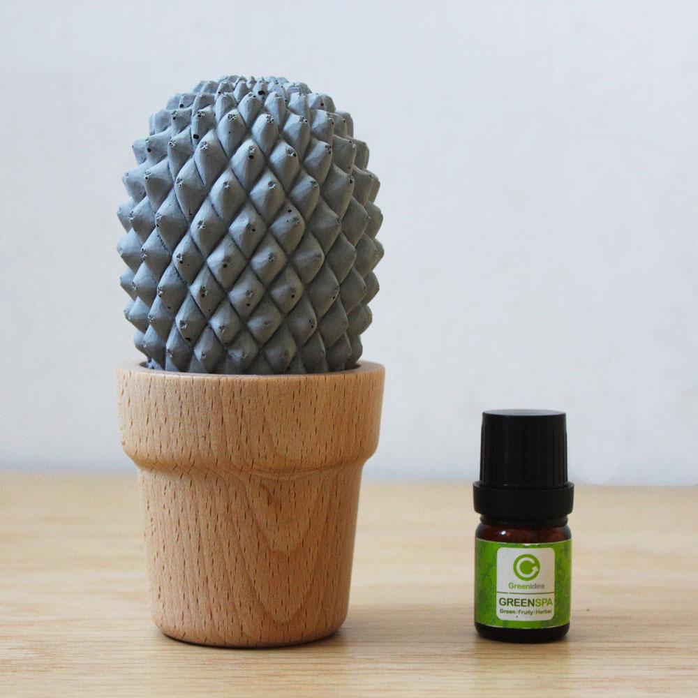 Green Idea|仙人掌擴香座-H13.5cm