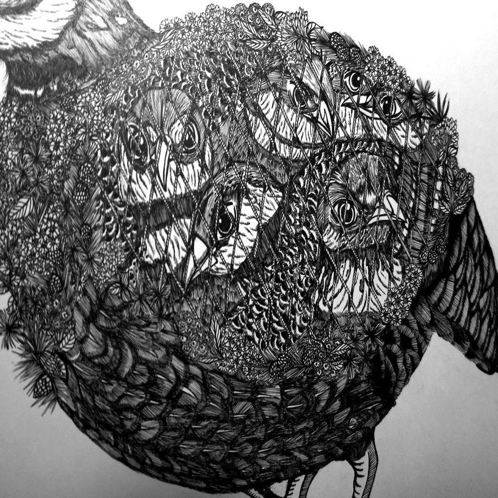 時刻創意|珍線禽-系列02 臺灣山鷓鴣