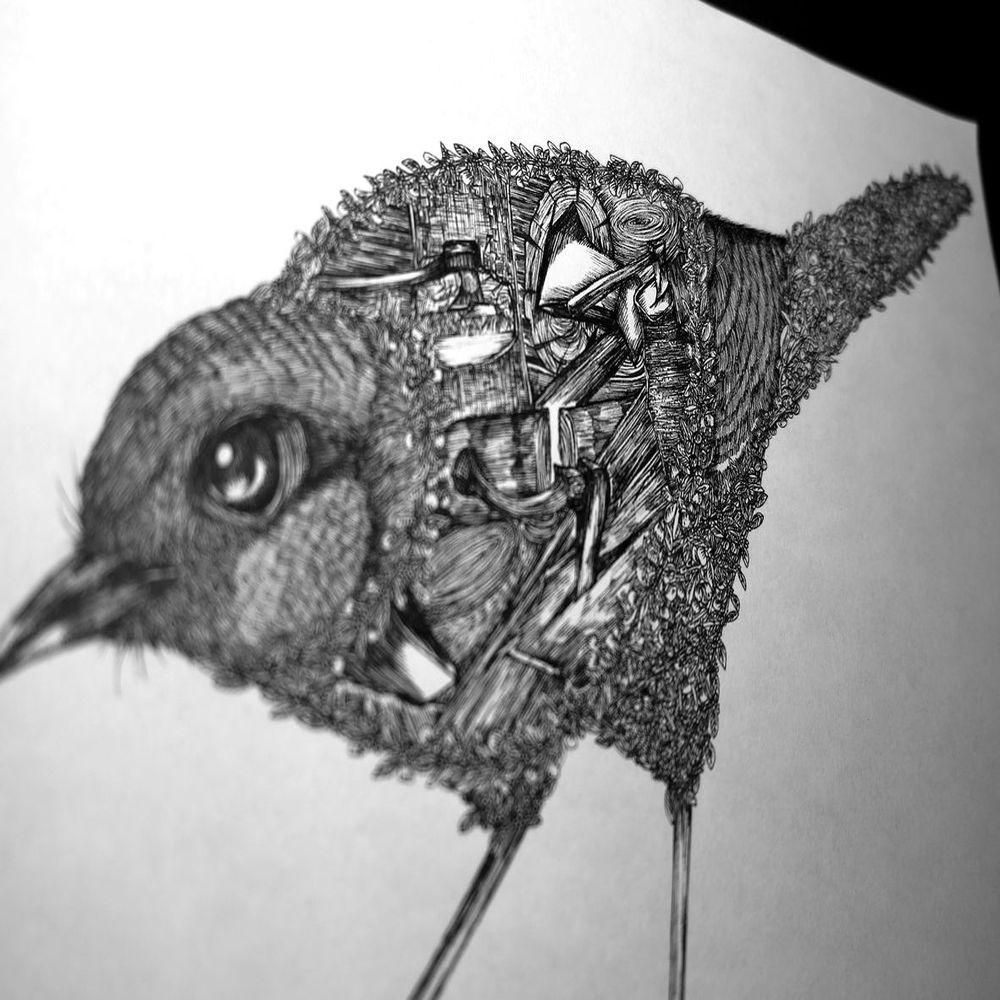 時刻創意 珍線禽-系列05 棕噪眉