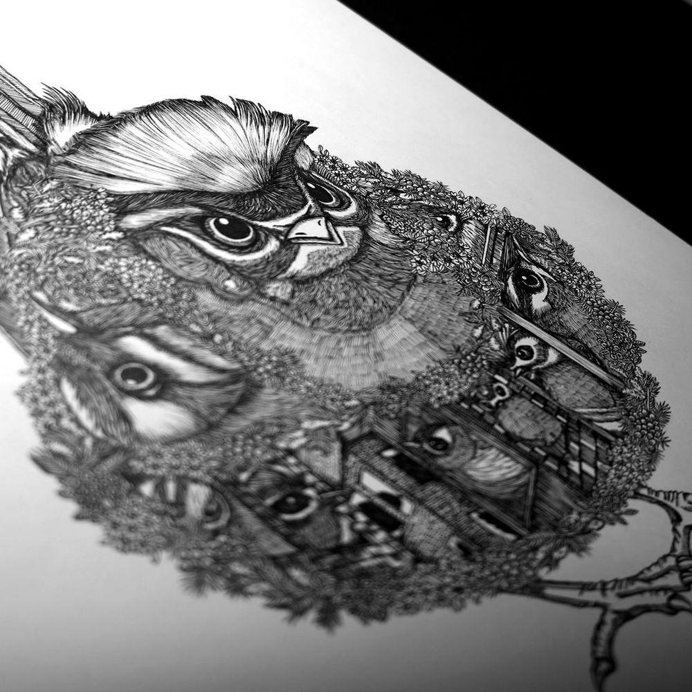 時刻創意|珍線禽-系列01火冠戴菊鳥