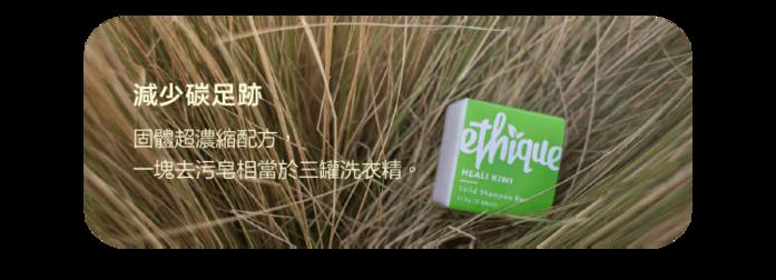 紐西蘭Ethique|一閃即逝 (神奇去污皂)