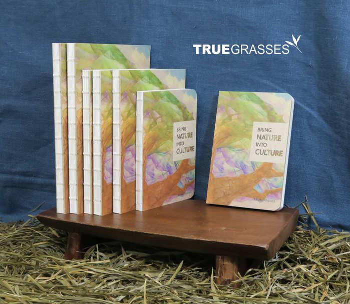 Truegrasses|真草紙記事本5