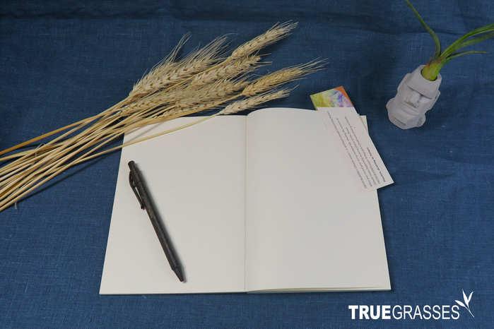 Truegrasses|真草紙記事本A5