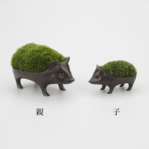 能作|療癒系植栽盆-刺蝟(子)