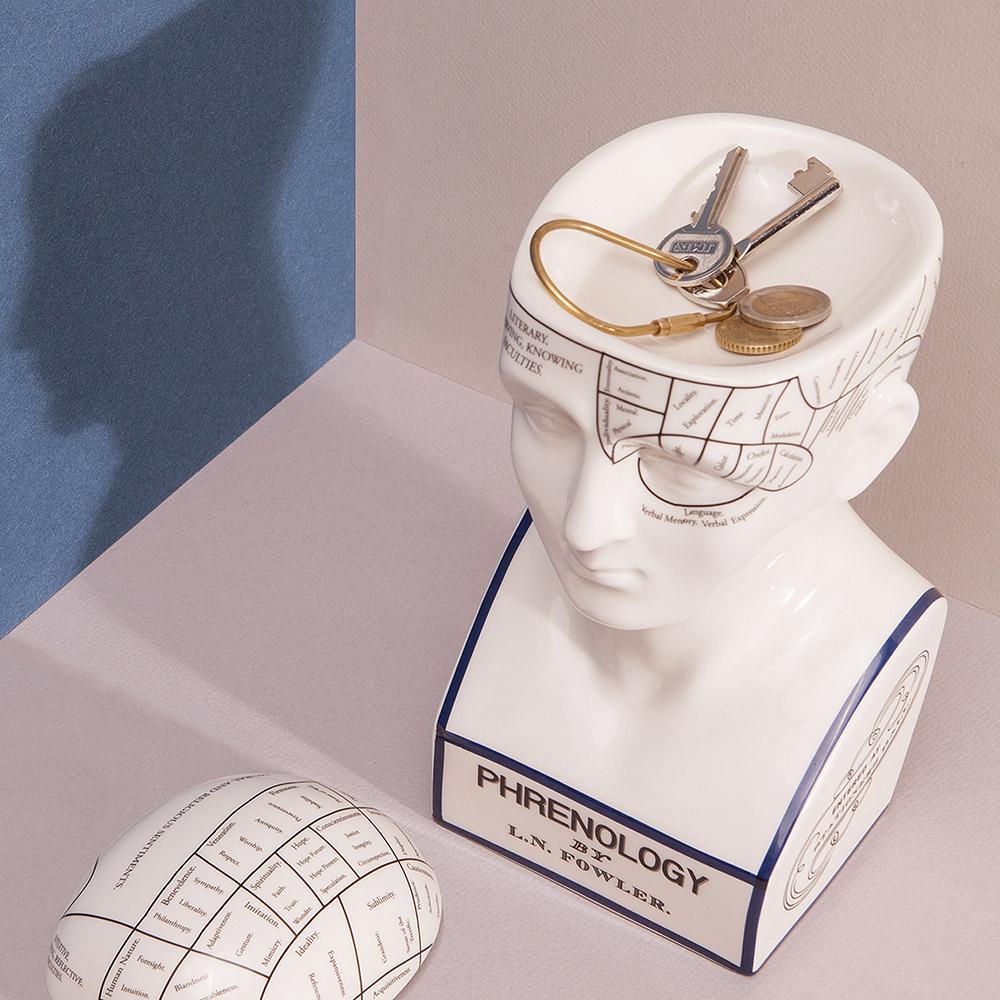 DOIY|大腦思考家-收納盒