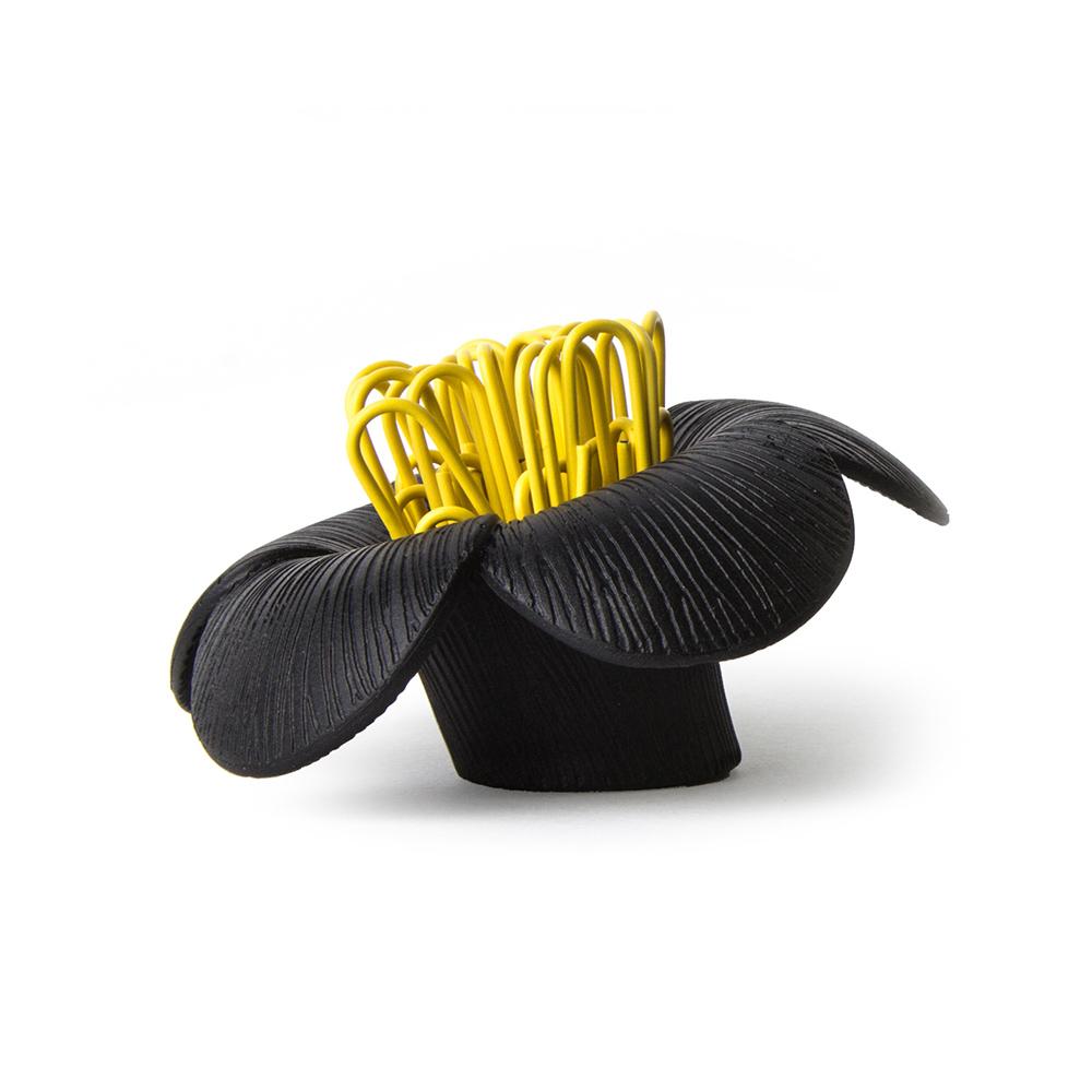 QUALY|山茶花-迴紋針組(黑)