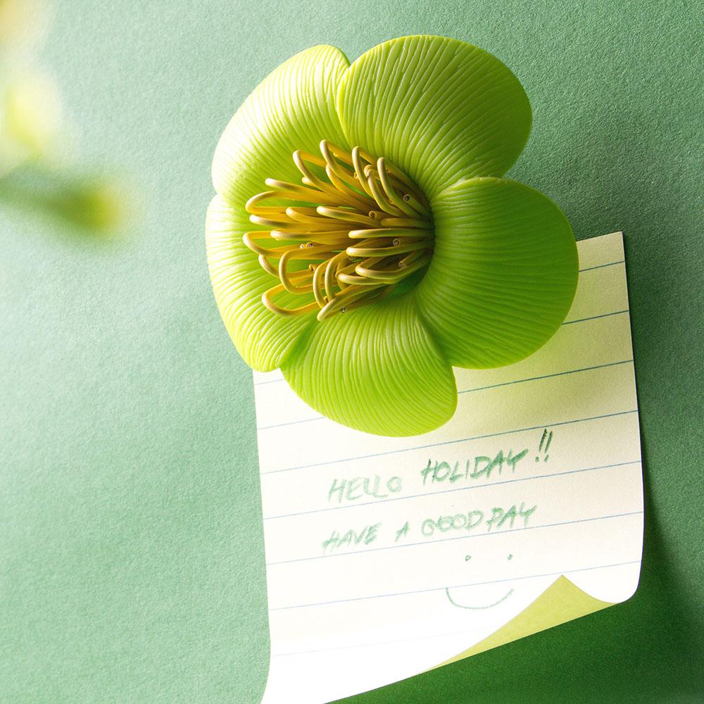 QUALY|山茶花-迴紋針組(綠)