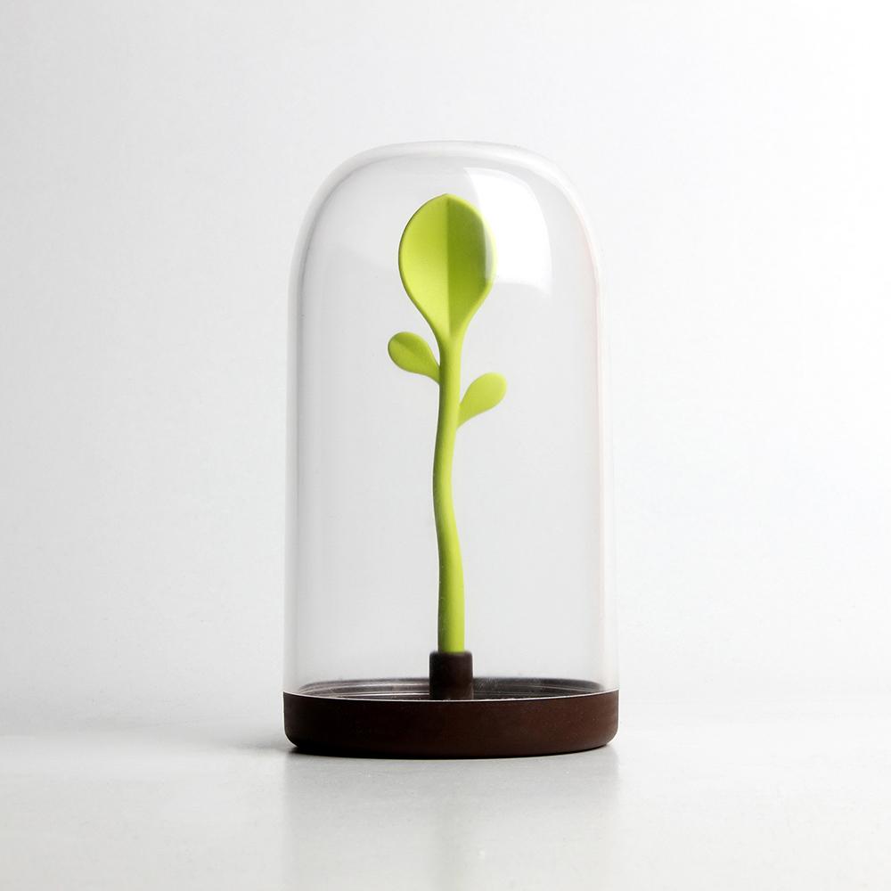 QUALY|嫩芽出土-置物罐