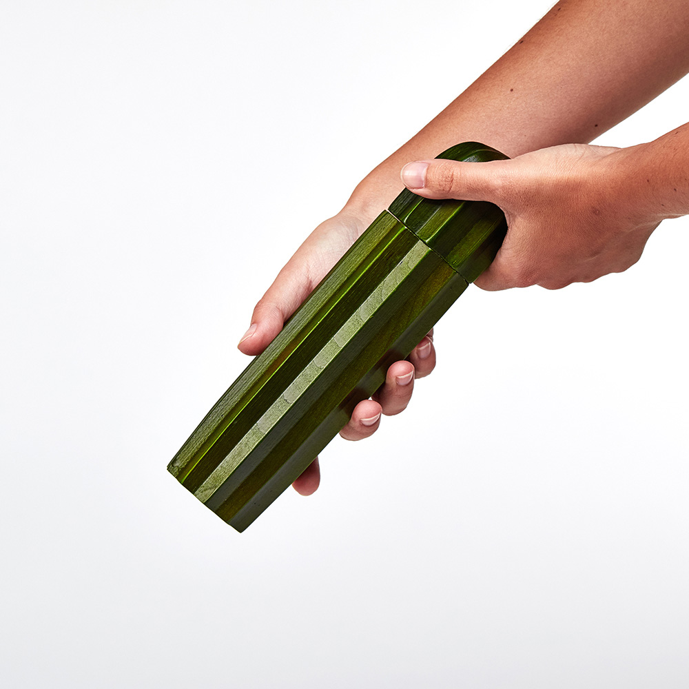 DOIY|仙人掌胡椒鹽罐研磨組