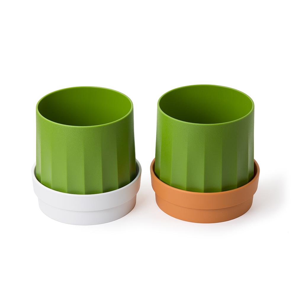 QUALY|仙人掌-捲筒衛生紙盒