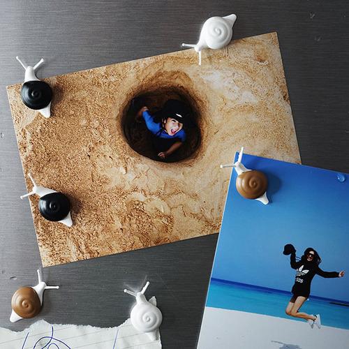 QUALY|小蝸牛磁鐵