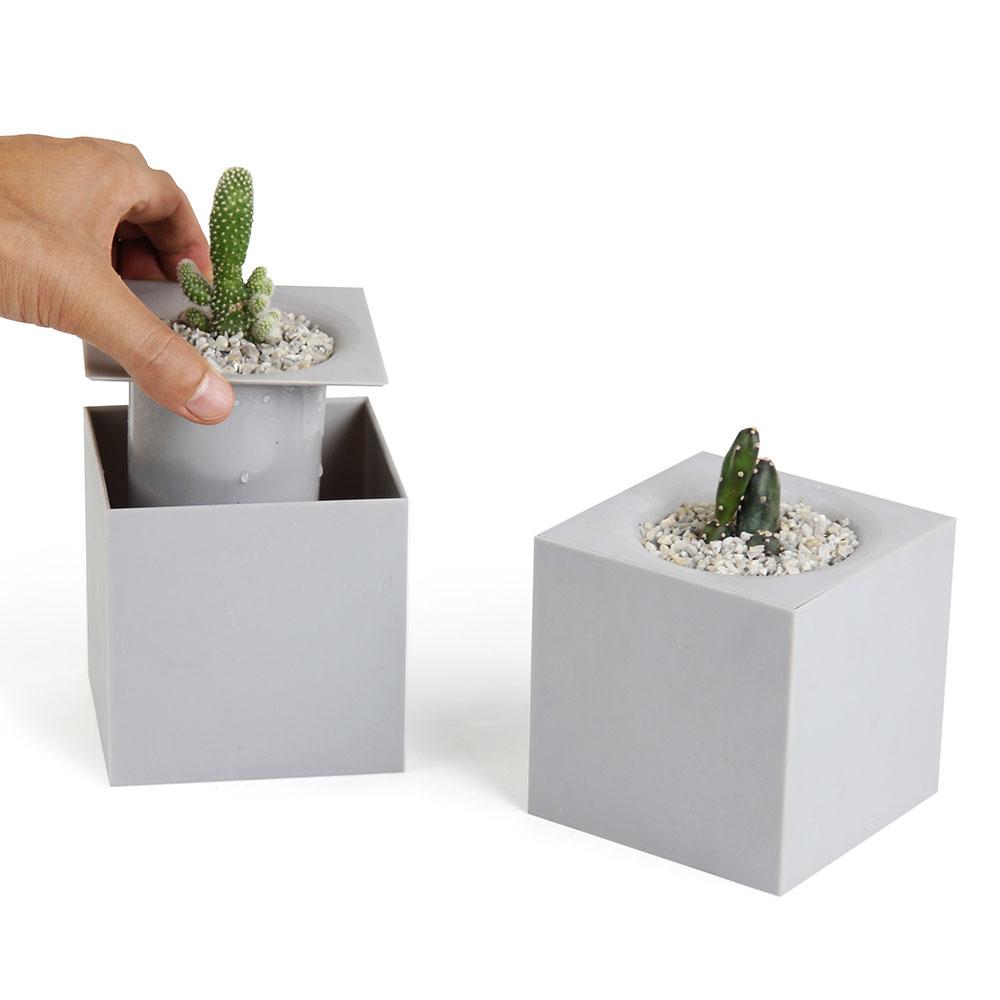 QUALY|方塊-免澆水花器