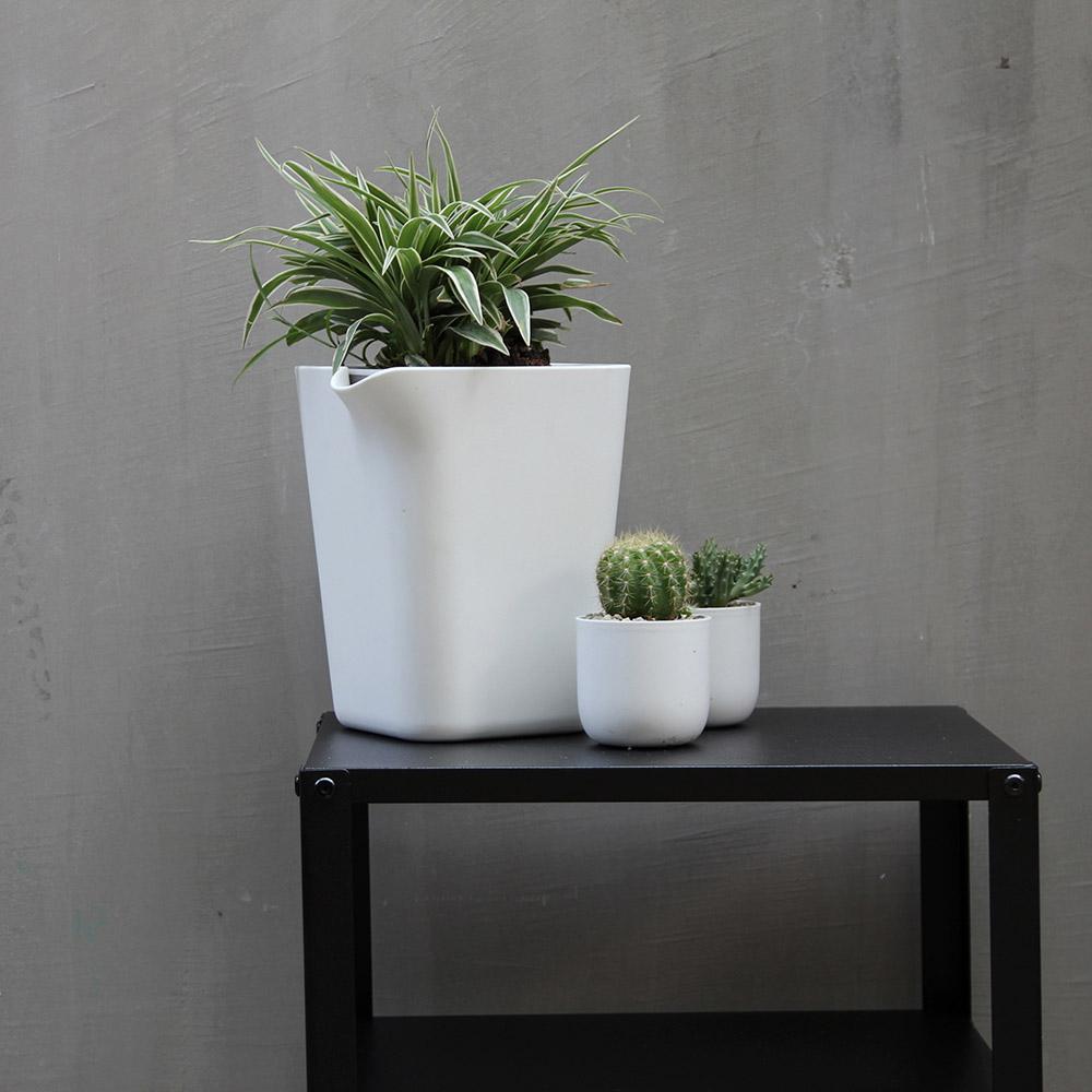 QUALY 綠洲-免澆水方形花器S