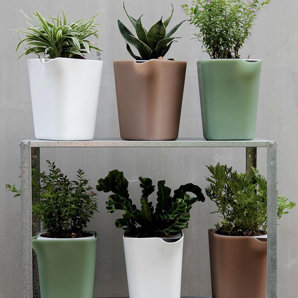 QUALY|綠洲-免澆水方形花器L
