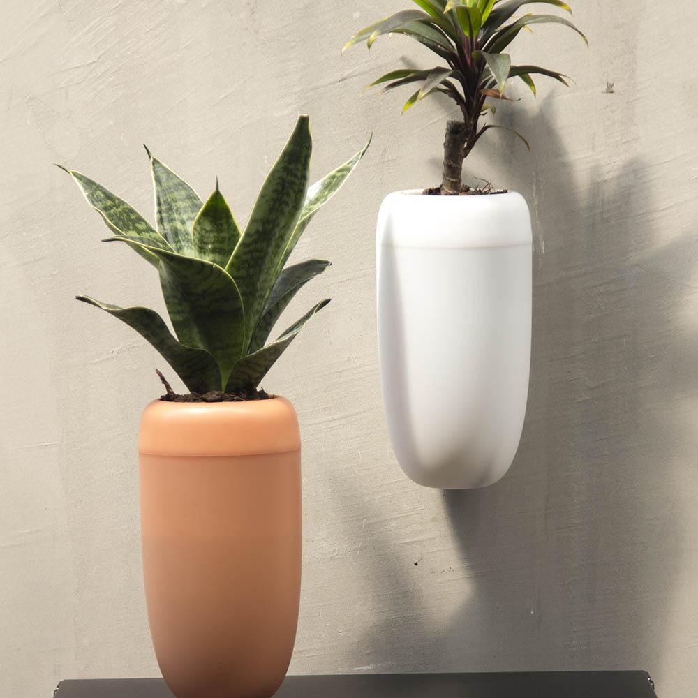 QUALY|紅蘿蔔-免澆水花器