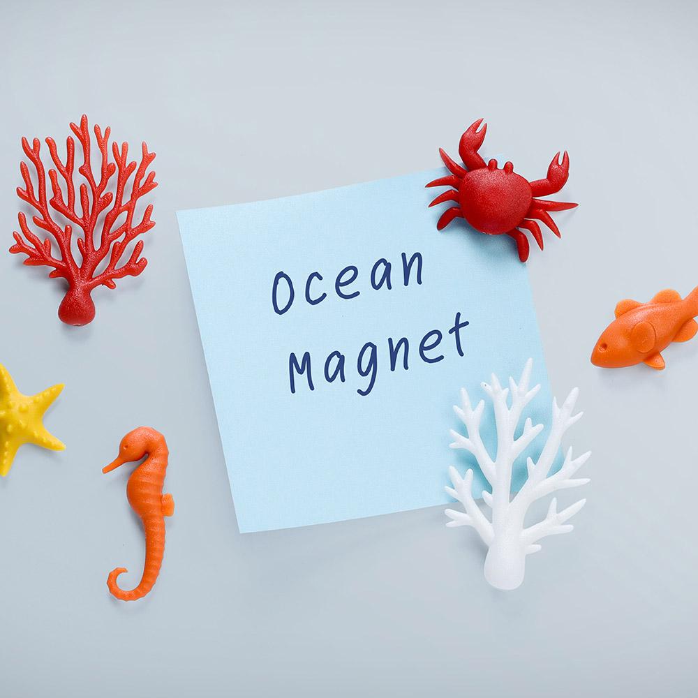 QUALY 熱帶海洋磁鐵
