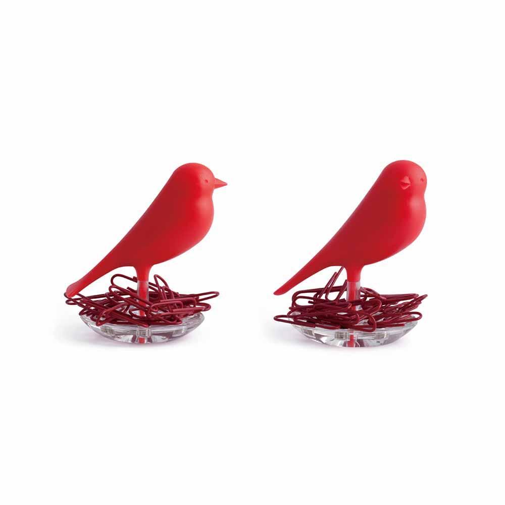 QUALY|雀兒巢