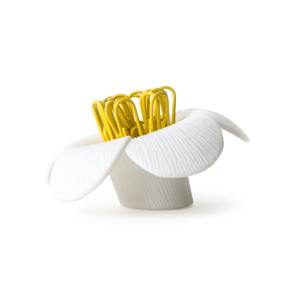 QUALY|山茶花-迴紋針組(白)