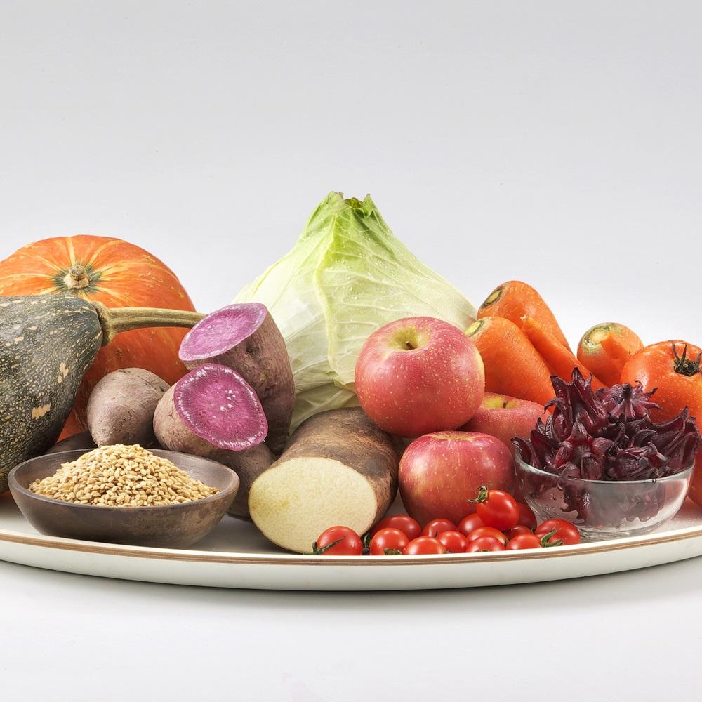 PROVEN|健康579益菌多--二日份體驗包