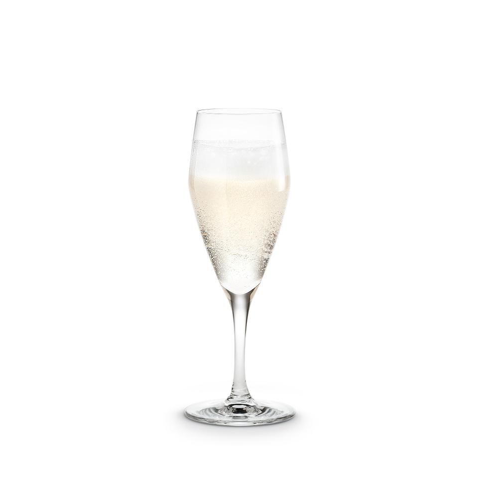 北歐櫥窗 Holmegaard|黃金協奏曲4號-香檳杯 (23cl、1入)
